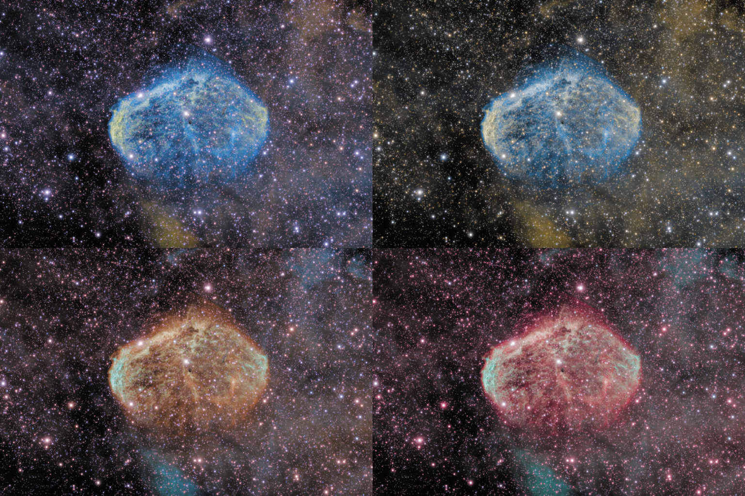A 4-panel showing NGC 6888 in four different narrowband renderings.